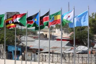 Igad flags