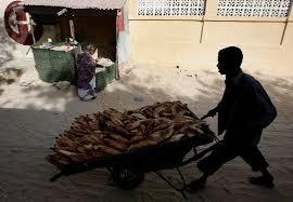 Zoope 3 food cart